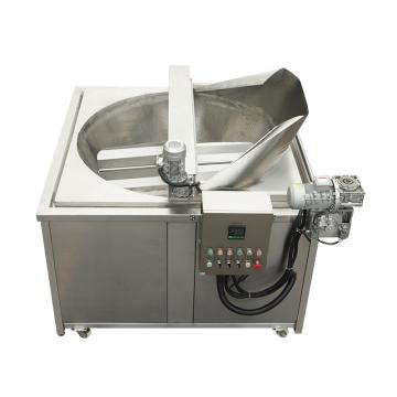 Professional Ce Certificate Freidora Kitchen Equipment Electric Gas Industrial Deep Fryer