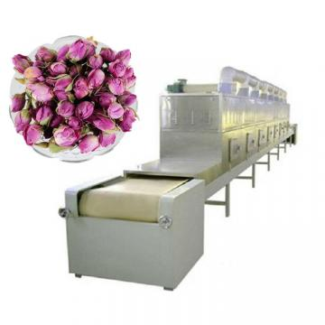 Onion Fruit and Vegetable Food Drying Multilayers Conveyor Flow Bed Mesh Belt Dryer Machine
