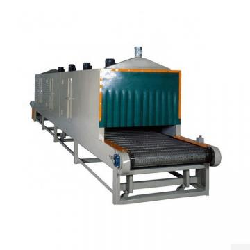 Continuous Mesh Belt Dryer/ Drying Machine for Drying Potato and Onion