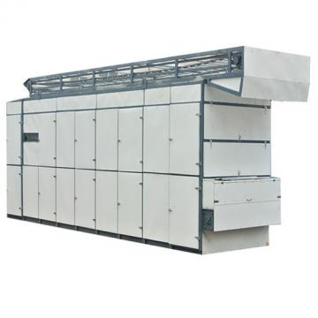 Mesh Belt Drying Machine for Spice Fruit and Vegetable Dryer Machine